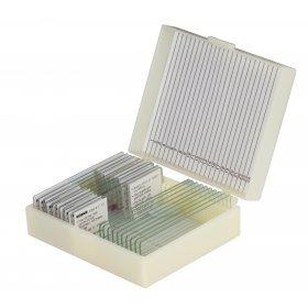 Набор микропрепаратов Konus 10: «Биология» (часть 2) модель 76609 от Konus