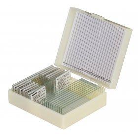 Набор микропрепаратов Konus 10: «Естественные науки» модель 76610 от Konus