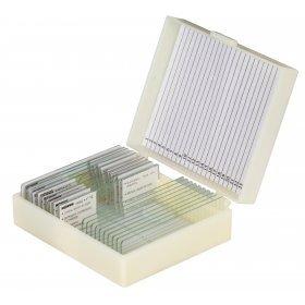 Набор микропрепаратов Konus 25: «Клетки и ткани животных» модель 77064 от Konus
